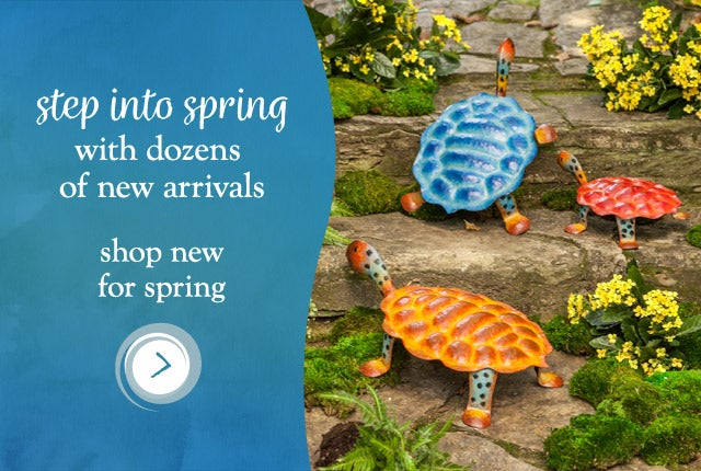 Step into Spring with dozens of new arrivals - Shop new for Spring