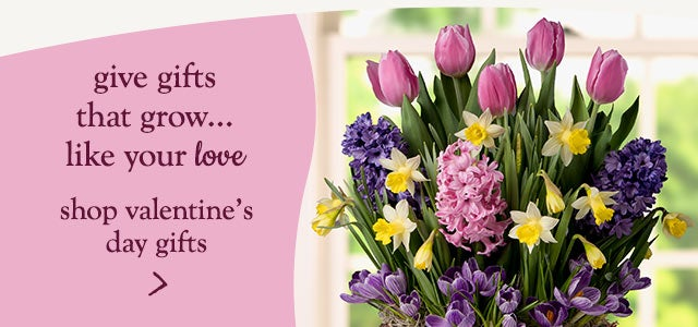 give gifts that grow...like your love - shop valentine's day gifts